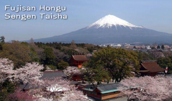the Fujinomiya Sengen Taisha  Shrine