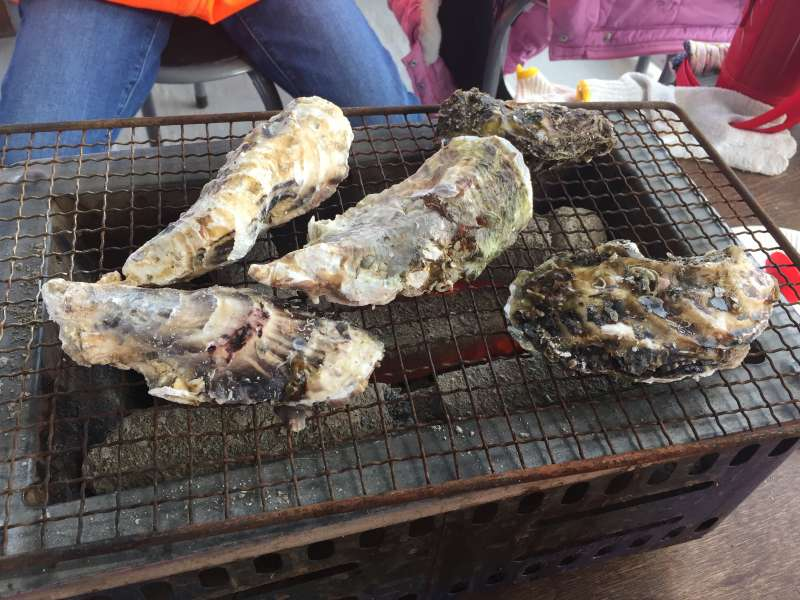 Oyster barbecue in Momochi hama park