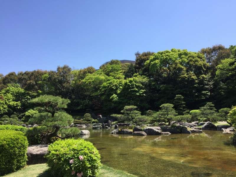 a Japanese garden in Ohori park