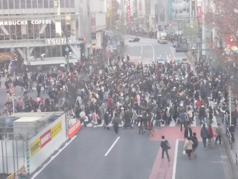 Busy cross street in Shibuya.