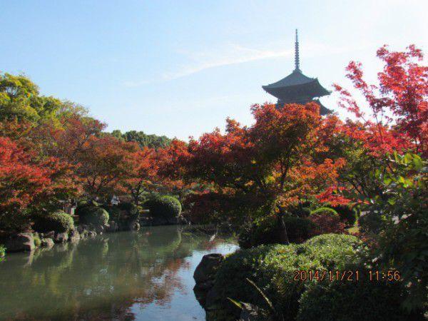 Five-story pagoda at Toji Temple