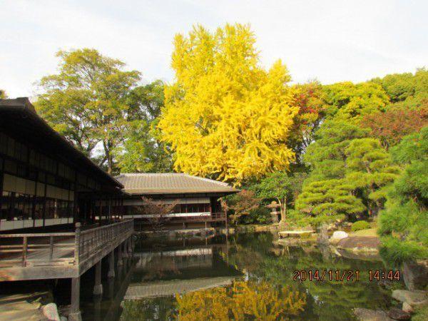 Rinchitei at Shosei-en Garden