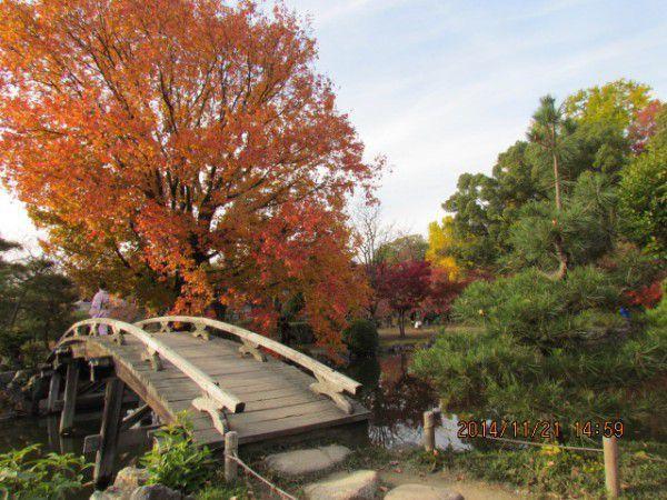 Snow-capped bridge at Shosei-en Garden