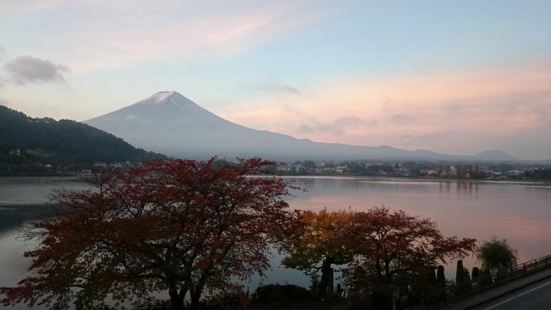 One day - Private Tour in Mt.Fuji Area