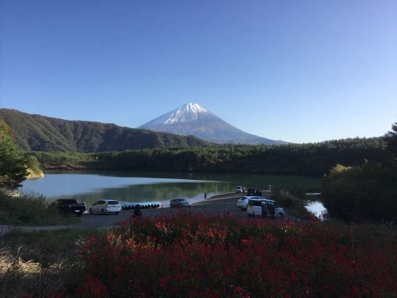 Walking in Aokigahara,the sea of trees, and exploring caves