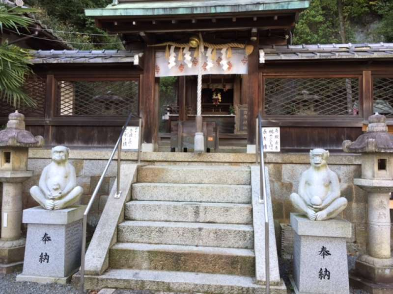 Hiyoshi jinjya shrine.  It is unique shrine in coexistence with Buddhism of Tendai sect in the 10th century.  Monkey, named Saru in Japanese, means GET AWAY evil spirit, is guardian animal in this shrine.