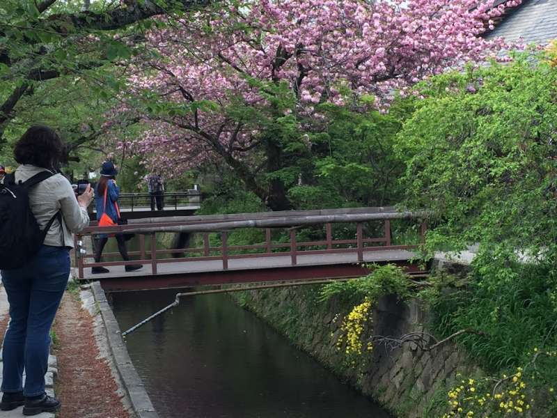 Nanzenji temple leads Tetsugaku-no michi, philosopher's path along the Sosui creek. It is about 1 km distance to Silver pavilion.  It is amazing with cherry blossom in April, and autumn leaves in November.