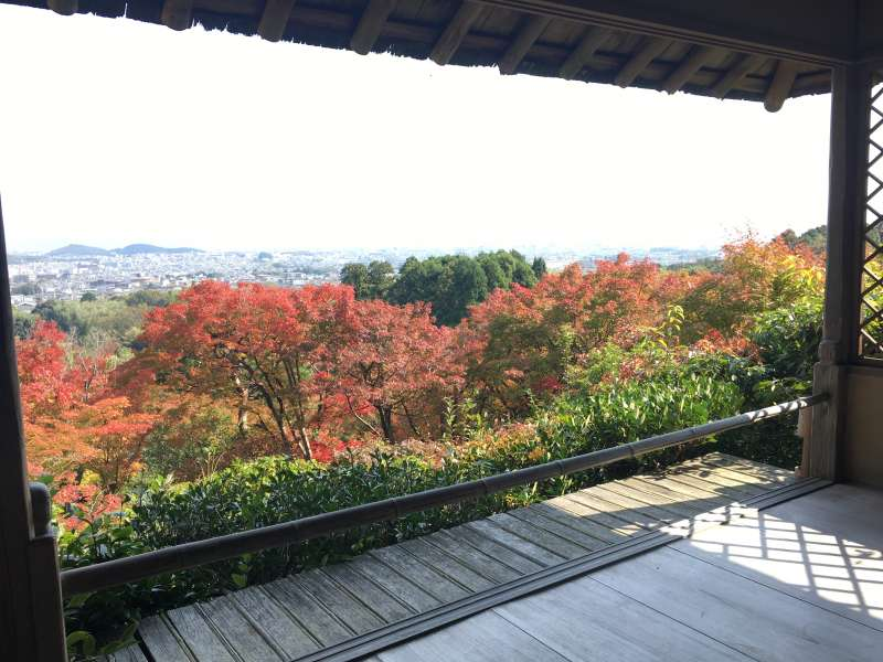 Have a view from Okochi villa