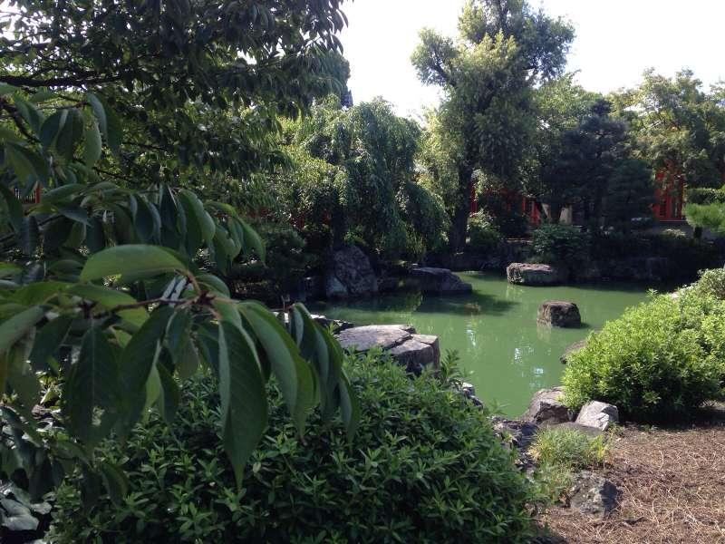 Monkey's park in Arashiyama