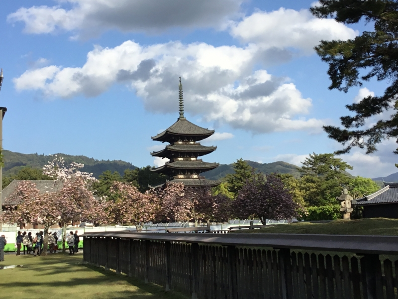 The five storied pagoda : The second highest one with 50-meter-high. This wooden structure has been standing for more than 590 years after reconstruction.