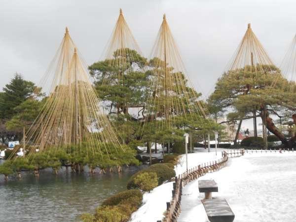 Yukizuri Snow protection