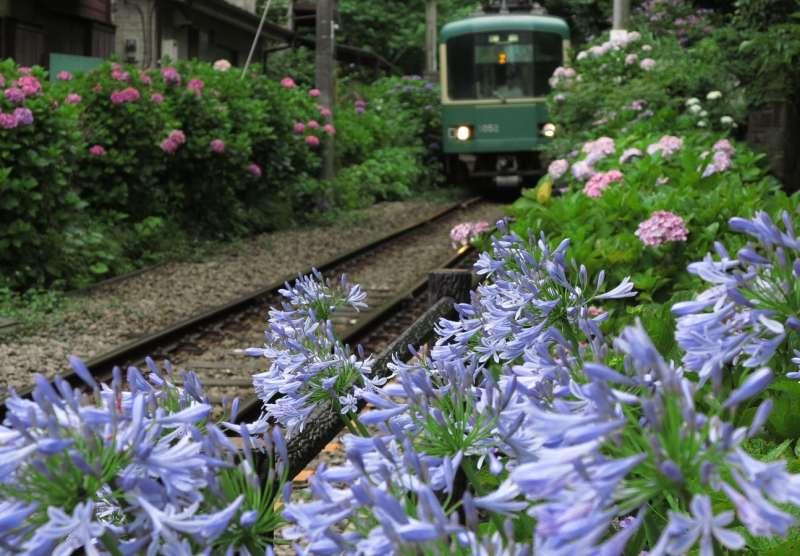 Kamakura's three major spots and the great ocean views from Inamuragasaki