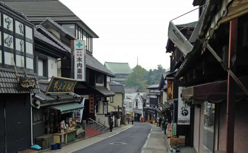 Omote-sando, front sloop approach to Narita temple