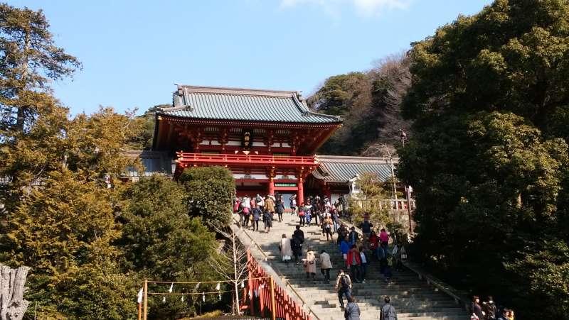 Turugaoka- Hachimangu shrine sits in the center of Kamakura.