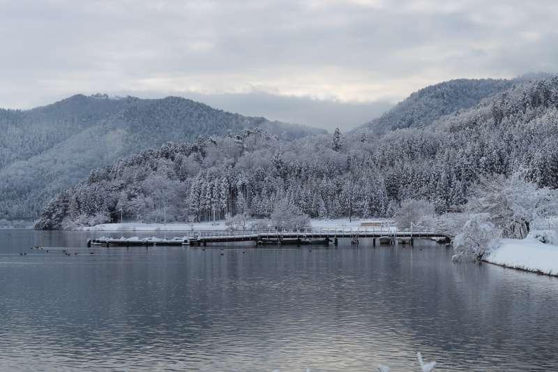 Winter Landscape along Lake Yogo [1 of 3]