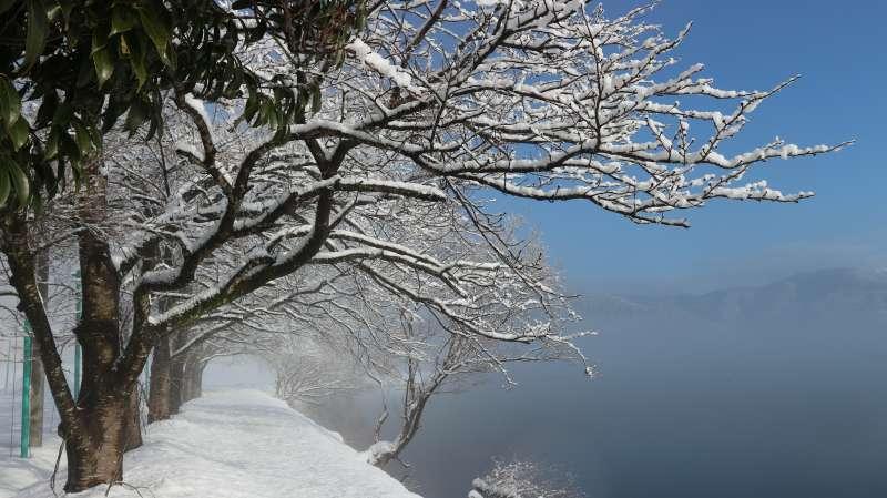 Lake Yogo in the Foggy Morning (余吴湖在有雾的早晨) [3 of 4]