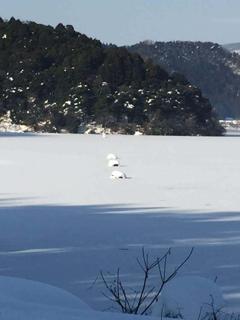 Interesting Shape of Snow on the Surface of the Lake