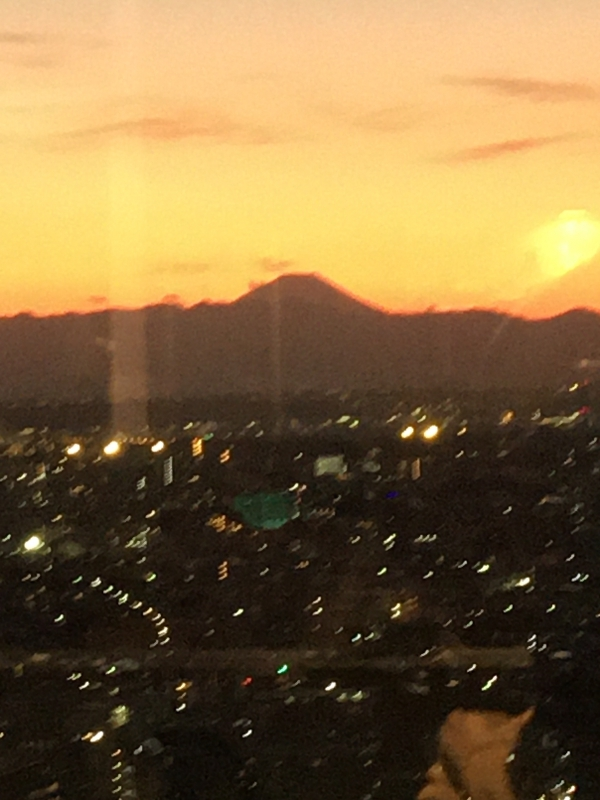 A silhouette of Mt. Fuji in a beautiful sunset - amazing view from Carrot Tower in Sangenjaya