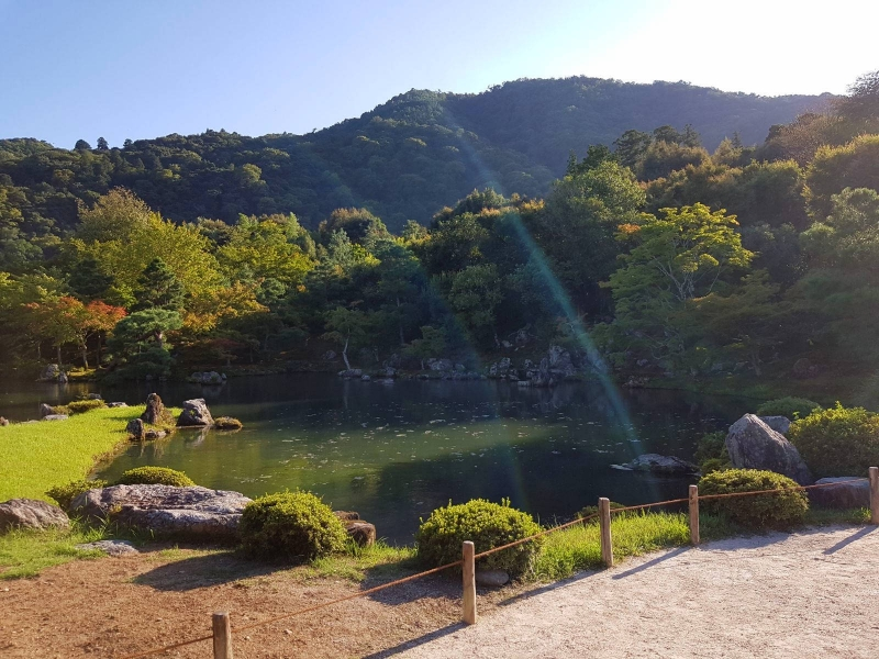 One of the UNESCO sites in Kyoto - beautiful garden at Tenryuji temple.