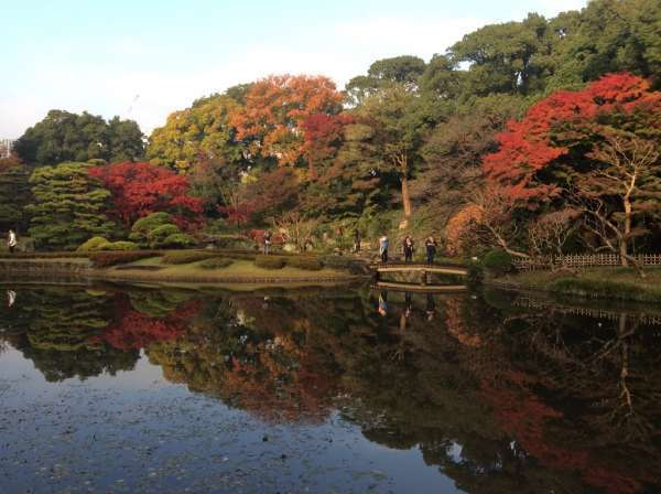 8. A Japanse garden called Ninomaru Teien which is a typical strolling type garden with a pond and trails.