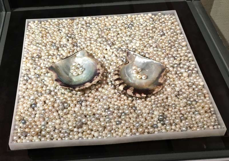 One of the displays of the Pearl Museum in Mikimoto Pearl Island.   Pearls are cultured in Pearl Oysters.