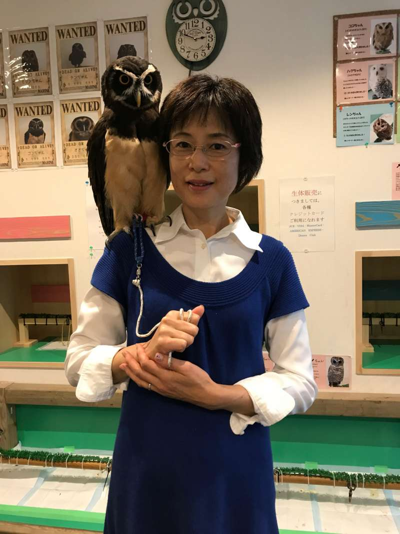 The owls range from palm-size to about this size! Amazing! (#7)