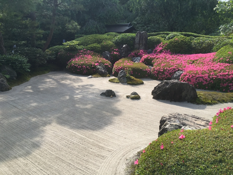 Azalea and the pebbled garden at Meigetsu-in Temple