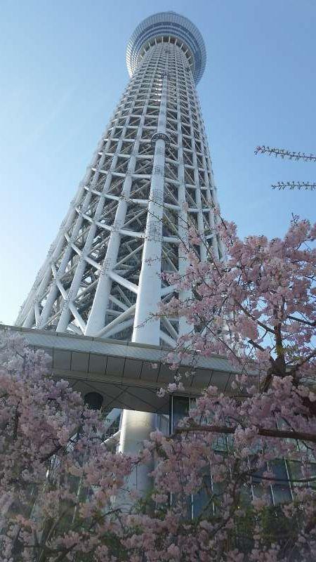 Tokyo Skytree Tower