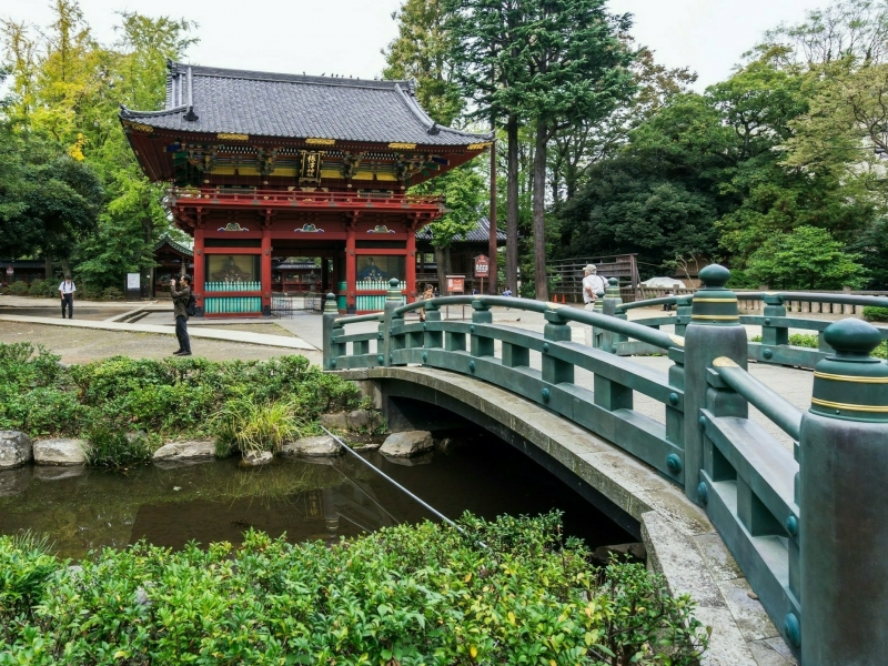 Nezu Shrine, Tokyo's oldest shrine noted for its magnificent view!!