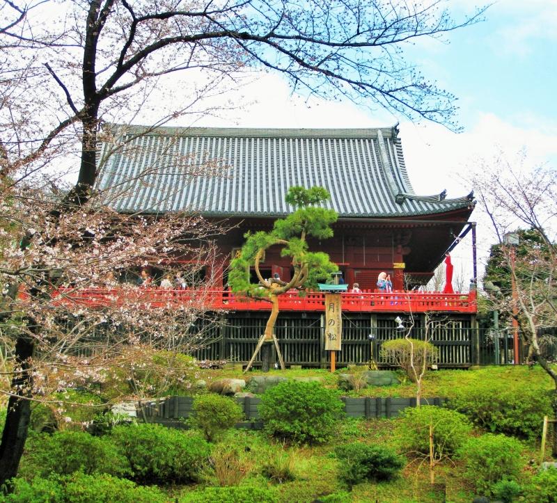 Ueno Park: Kiyomizu Kannondo