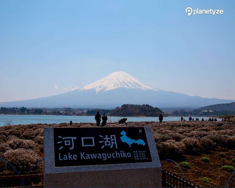 Lake Kawaguchico & Mt.Fuji