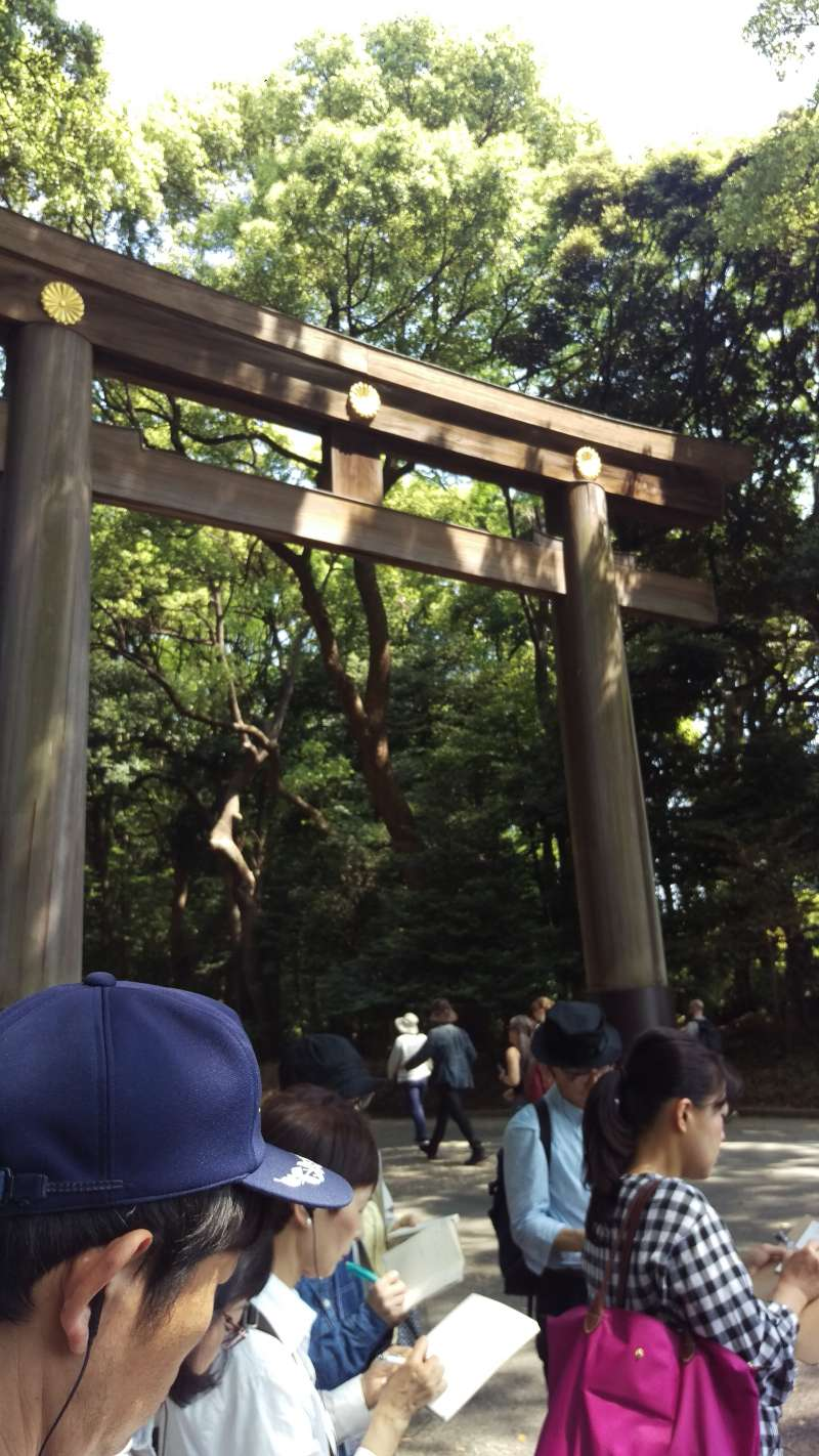 The torii at southern approach of Meiji Shrine