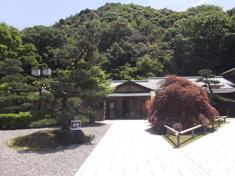 You can enjoy casual tea ceremony here.