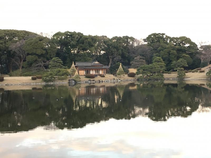 Hamarikyu garden is one of the historical Japanese style gardens that was built in Edo era.