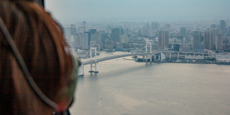 [10 Minutes] Tokyo Tour:  Introductory Helicopter Flight