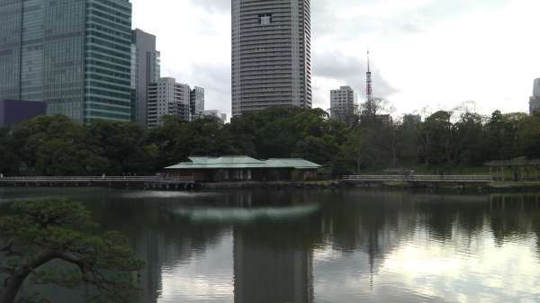 Hamarikyu-Garden (Salt water pond with a tea house where you can try sweets with tea)