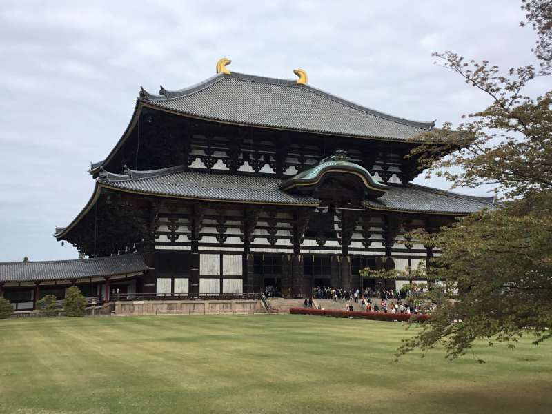 Originally built in AD752. The present structure, dating back to the Edo period, the 18th century. The one of the largest wooden structure construction with dimensions: W57m X L50m X H49m.