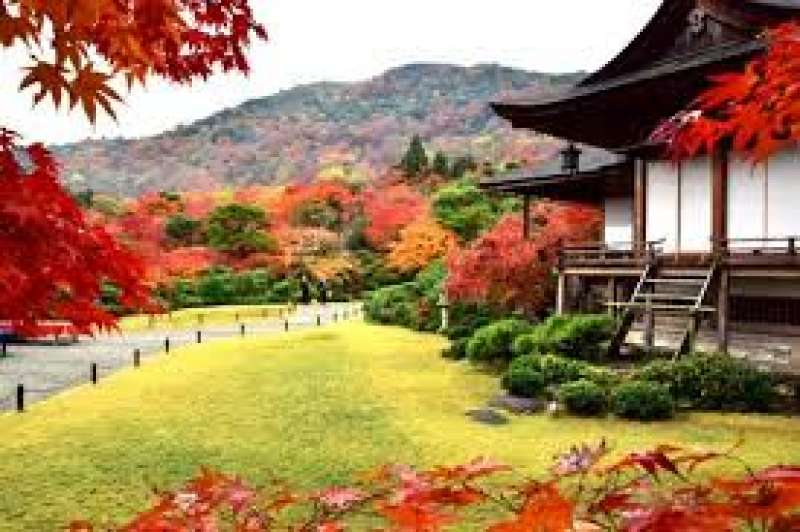 Ōkōchi Sansō (literally