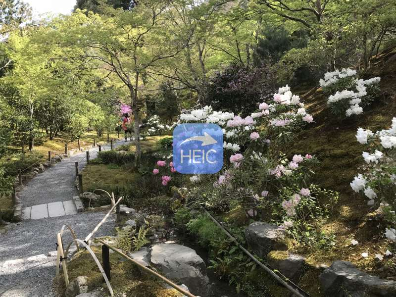 He planted a garden that highlights all four seasons: cherry blossoms, azaleas, Japanese maple trees, and many pines. The villa is located a short distance from Tenryuji. Along with the price of admission, you will receive tickets for green tea and a sweet.