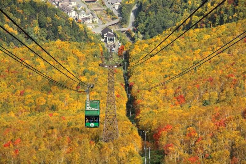 Autumn Sounkyo Private Day Tour