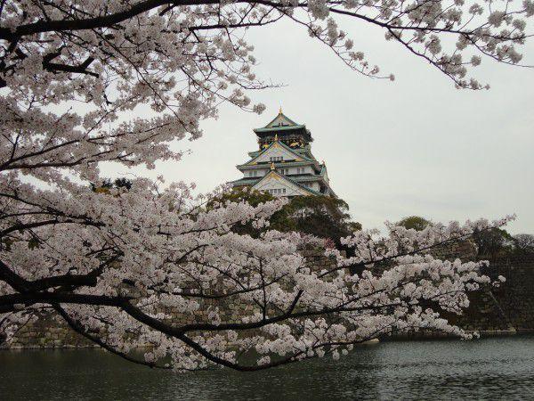 Beautiful Osaka Castle !!