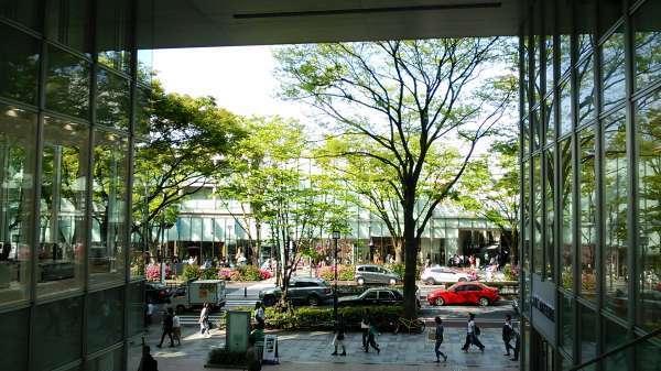 Omotesando (harajuku) - popular shopping street with many shops, restaurants and cafe.