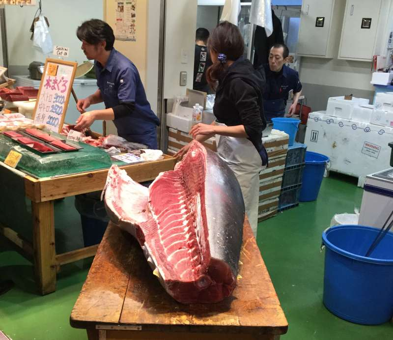 A cut of giant tuna for sale