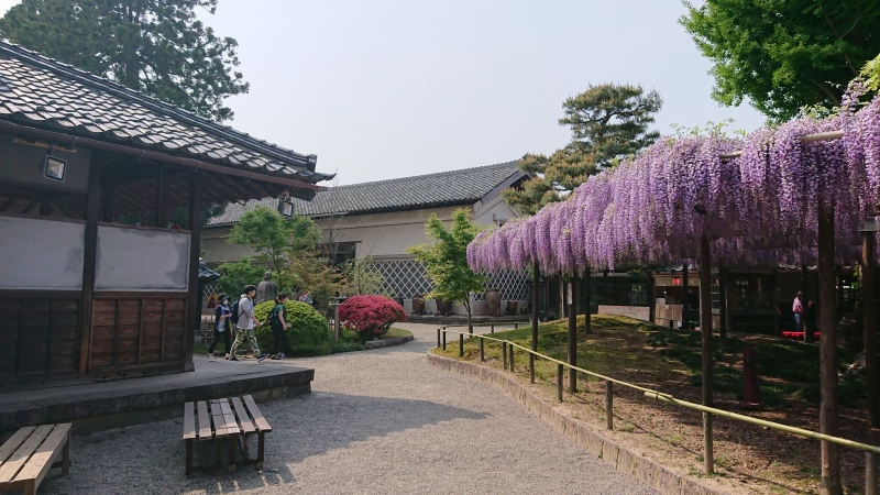 The central garden of the Northern Culture Museum in May.