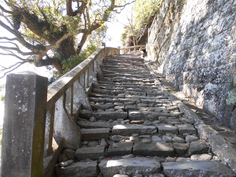 1,100 stone steps to the top of Kunozan