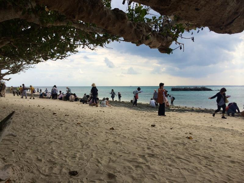 Let's find Star-shaped sand at KAIJI HAMA beach !