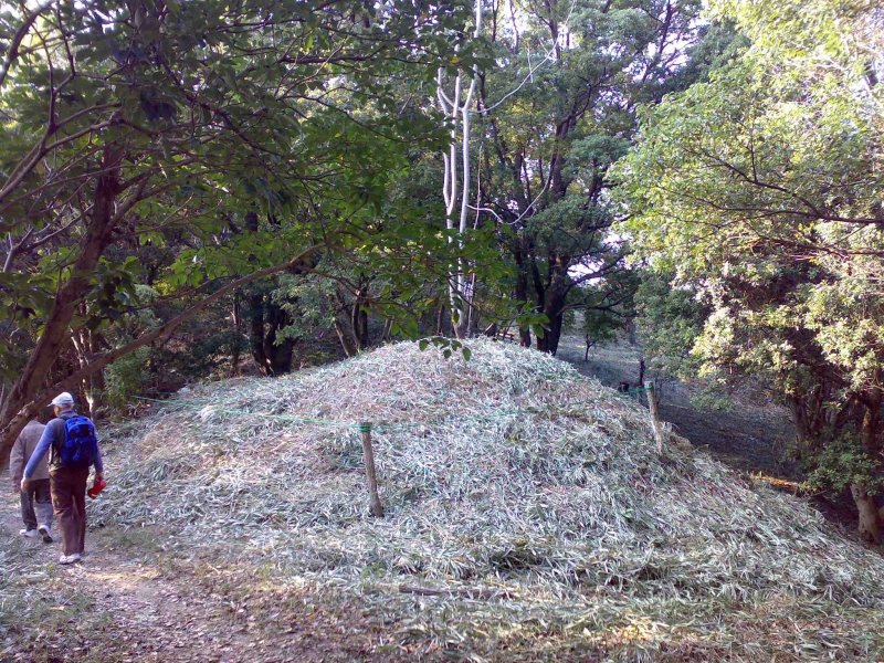 A small tomb mound at