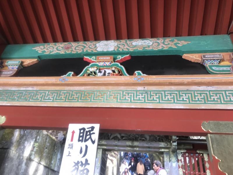 Carving of Sleeping Cat of Toshogu Shrine