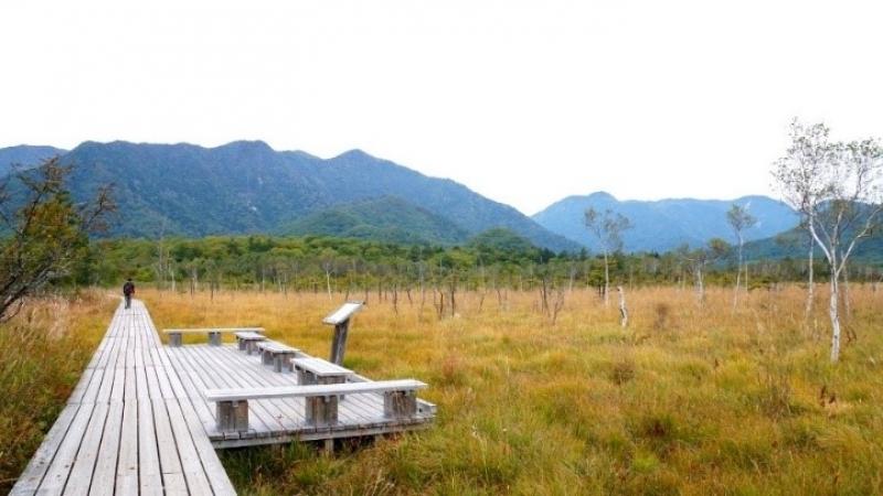 Senjogahara plain located on altitude around 1400m upper Ryuzu fall