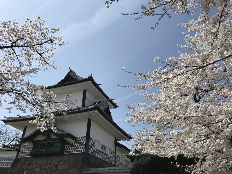 Kanazawa catsle park